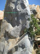 Rock Climbing Photo: Absorbine Junior (right side, blue) and Cornered (...