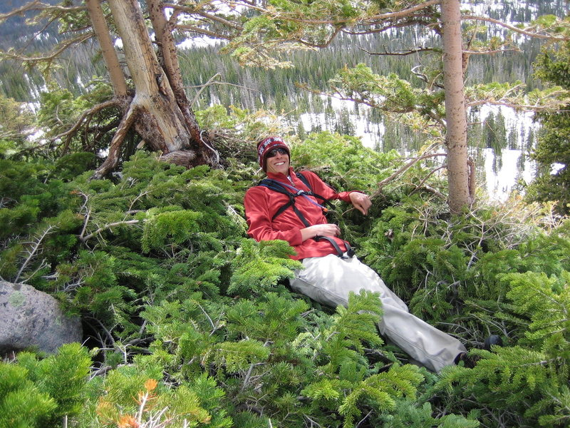 taking a rest in some trees half way up Hayden's Peak