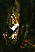 Rock Climbing Photo: tree crack v0