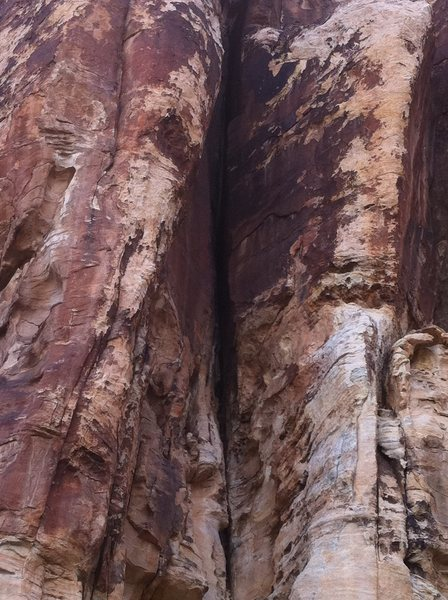 how can you walk by and not want to climb this?