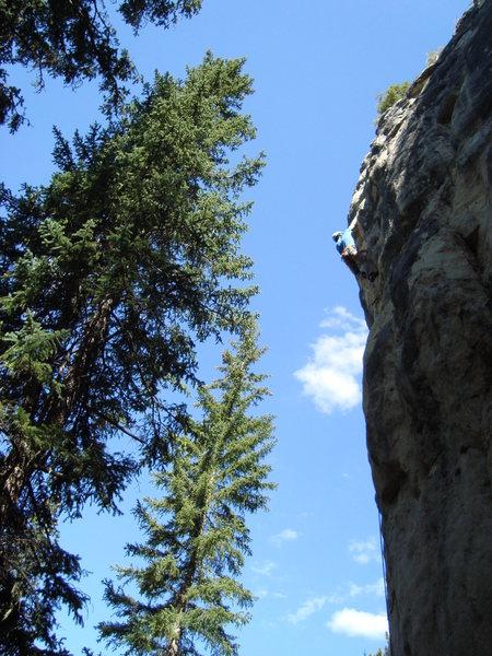 Rock Climbing Photo: Climbing The Juvenile.