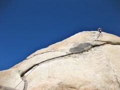 Rock Climbing Photo: top of toe jam