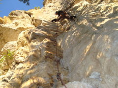 Rock Climbing Photo: Gets morning shade and some nice afternoon sun. Th...