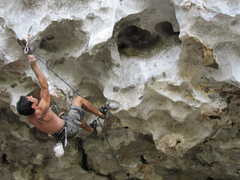 Rock Climbing Photo: Chien Lee, clipping (7c+) roof route of Cicak (Toa...