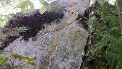Rock Climbing Photo: Beta for Zoro...fun easy slab problem