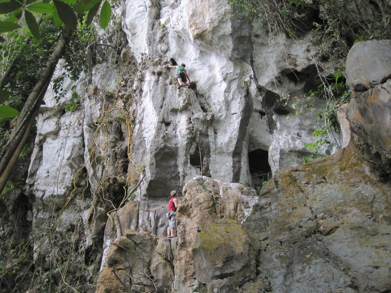 Rock Climbing Photo: Spectacular new spot in Borneo, The Zoo Wall. This...