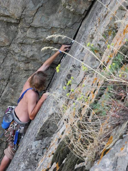 Steve placing gear