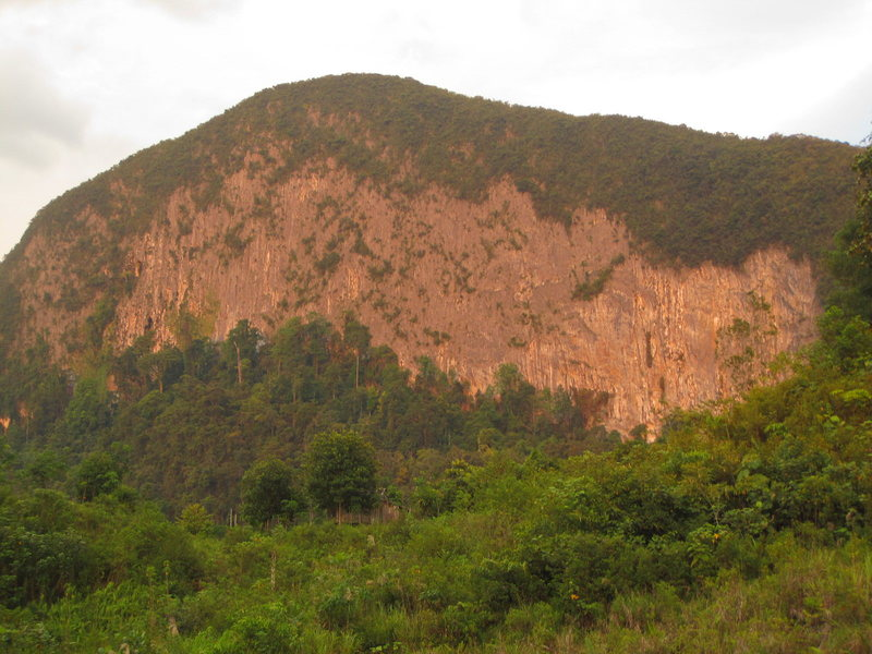 Undeveloped limestone wall, Gunung Staat, near our house. Bau, Sarawak, Malaysia