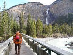 Rock Climbing Photo: Walking across the tourist bridge towards Takakkaw...