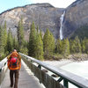 Walking across the tourist bridge towards Takakkaw Falls
