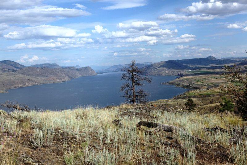 Looking along Lake Kamloops towards the town