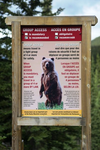 Before going into the back country it is best to check at the rangers station if there is any recent bear activity.