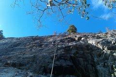 Rock Climbing Photo: Logan on Dirty Blonde.