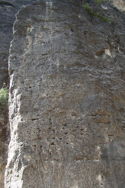 What yer gettin' on.<br> 1-8-7 (5.8)<br> Land of the Shorties<br> Sunshine Wall, Spearfish Canyon.