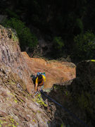 Rock Climbing Photo: Dave McRae on the bolted chossy hands section of p...