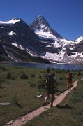 Rock Climbing Photo: Approaching Assiniboine from Lake Magog.