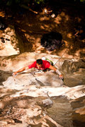 Rock Climbing Photo: howard on dynabolt gold