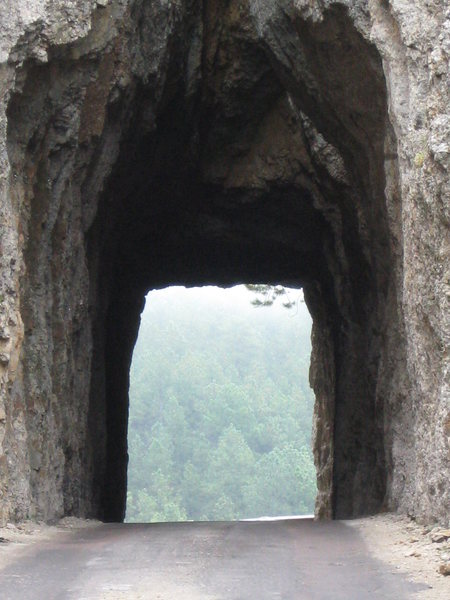 Rock Climbing Photo: Misty Pine Tunnel
