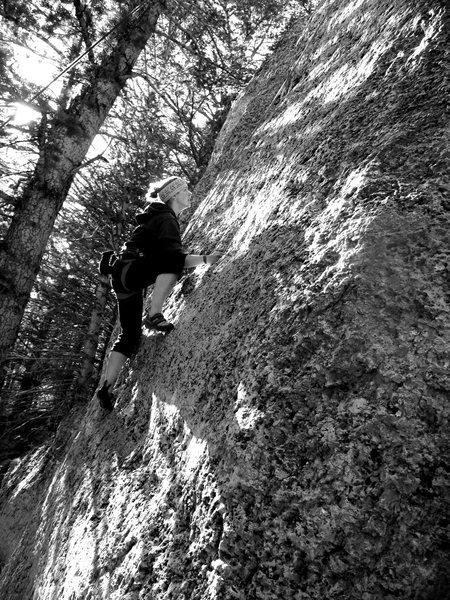 Rock Climbing Photo: wild iris limestone at ok corral, wy