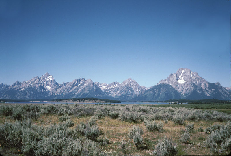Rock Climbing Photo: MT. Moran and the Tetons