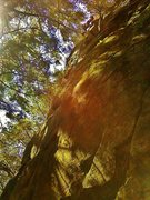 Rock Climbing Photo: Finishing up Bio-Degradable