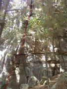 Rock Climbing Photo: Bio-Degradable