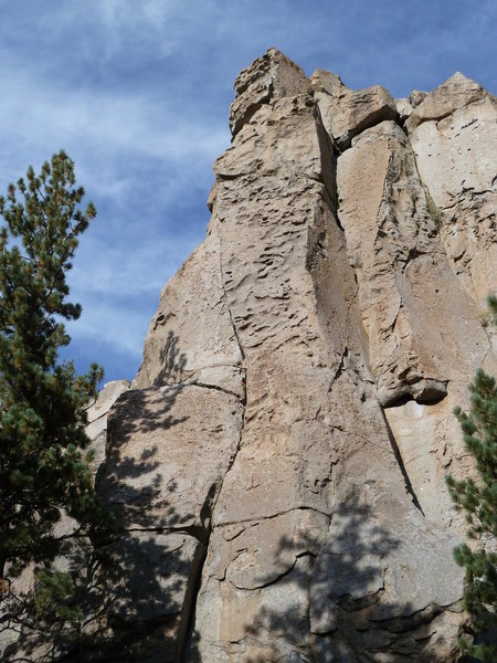 Stoned Wheat Thin Cliff (left side) detail, Clark Canyon<br>