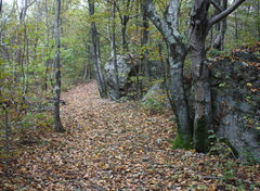 Rock Climbing Photo: once reach this point in secondary trail head down...
