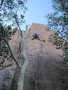 Rock Climbing Photo: Scott sending with style.