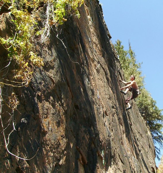 Jason Halladay on Nescafe (5.9).  Warm weather climbing in late September.  The hops vines are starting to wither.