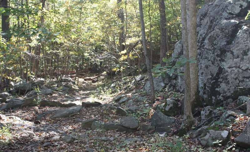 look for big rock on right of trail and gutter and take it LEFT.
