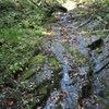 Stream side cascades near Frowning Buffalo Boulder
