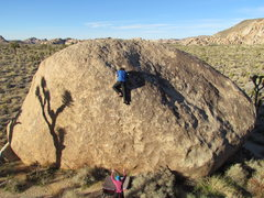 Rock Climbing Photo: Topping out on LHMFP V4.