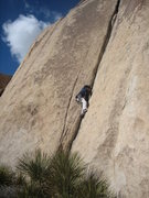 Rock Climbing Photo: leading pope's crack 10a.