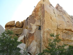 Rock Climbing Photo: alexis leading coarse and buggy 11b/c.