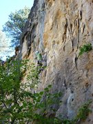 Rock Climbing Photo: CE looking up at the crux sequence and the huge po...