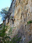 Rock Climbing Photo: Mid crux sequence...