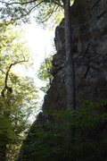 Rock Climbing Photo: left, tapered end
