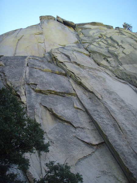 Extremely forshortened view of Igor Unchained (5.9)
