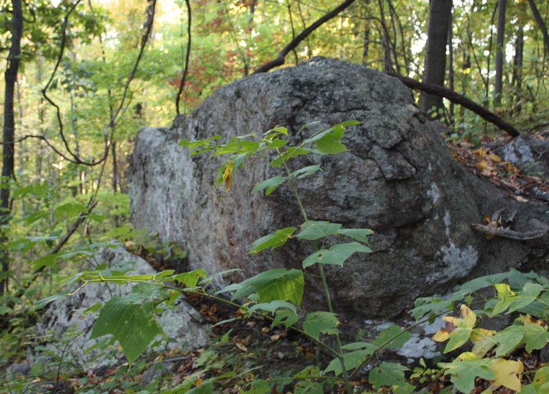 long bench boulder