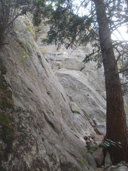 Rock Climbing Photo: Treasure Wall.