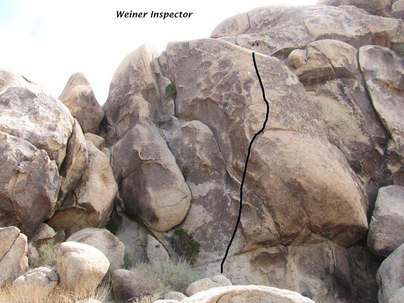 Weiner Inspector