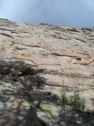 Rock Climbing Photo: Sport route approximately 5.9ish, just climber's r...