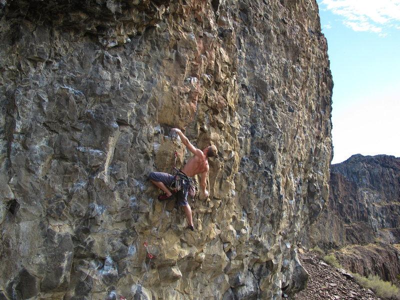 Rock Climbing Photo: House of Pain