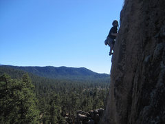 Rock Climbing Photo: Lluis climbing, with the pine forest below.