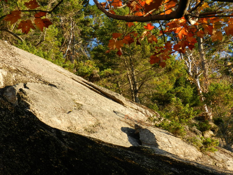 Rock Climbing Photo: Looking at the flakes on Acapulco Gold