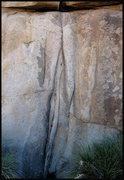 Rock Climbing Photo: Persian Room. Photo by Blitzo.