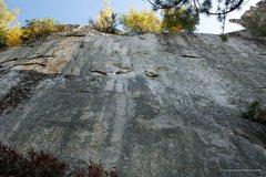 Rock Climbing Photo: Banana