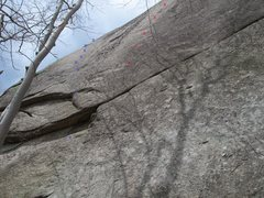 Rock Climbing Photo: the blue bolt line is Sex and the green on the lef...