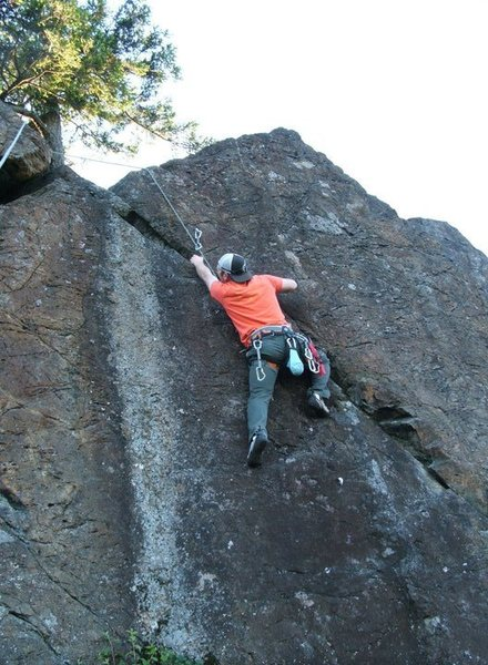 Brian T. on West Nile Virus 5.10 b/c